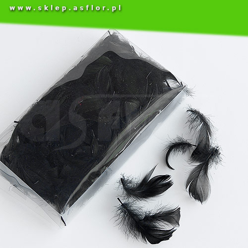 Piórka Dekoracyjne Czarne