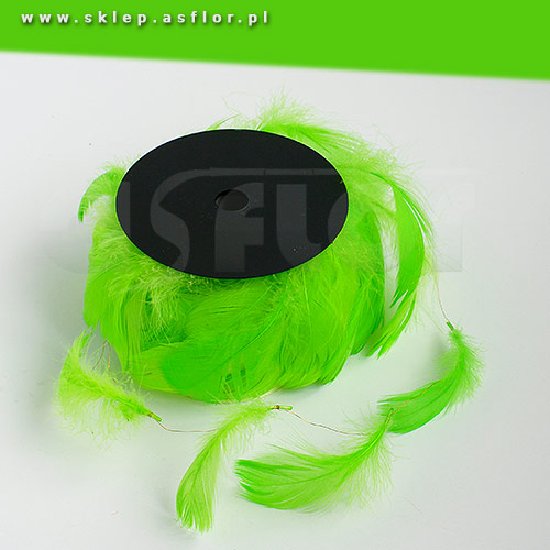 Piórka Na Druciku Jasno Zielone